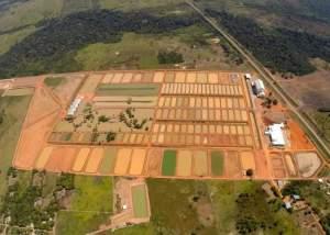 Complexo da Peixes da Amazônia
