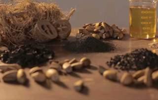Produtos da Tobasa feitos a partir do Babaçu